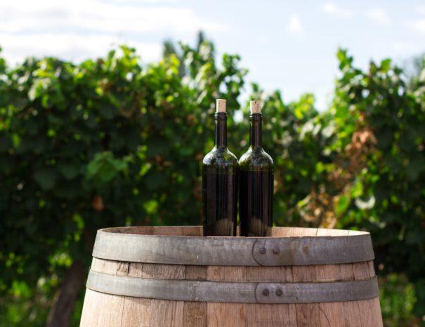 Vancouver wine tours - vines bottles